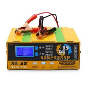 CHARGEUR DE BATTERIE Chargeur Intelligent 110-250V 12V-24V 200AH de Bat