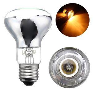 AMPOULE - LED Ampoule infrarouge émetteur chauffant pr animaux r