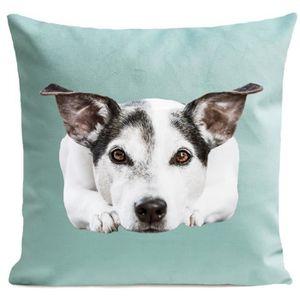 COUSSIN ARTPILO - Coussin DOGGY Coton déperlant - Vert ani