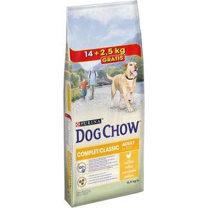 CROQUETTES DOG CHOW Croquettes au poulet - Pour chien adulte