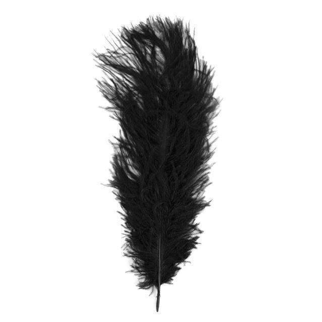 Plume d 39 autruche noir 30 cm 1 pi ce rayher achat vente plume de d co plume d 39 autruche - Plume noire signification ...