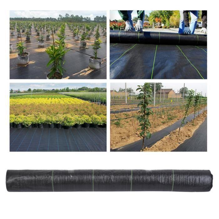 Bâche de Protection Anti-Mauvaises Herbes en Tissu Non tissé pour Jardin,  Paysage, allée, allée de Jardin - Noir/1×50 M