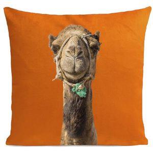 COUSSIN ARTPILO - Coussin SMILING CAMEL Coton déperlant -