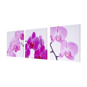 TABLEAU - TOILE Toile de décoration murale tableaux orchidée kit d