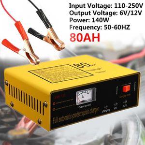 CHARGEUR DE BATTERIE 220V 6V/12V 80AH Chargeur de Batterie Intelligent