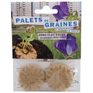 GRAINE - SEMENCE Bombes à fleurs avec graines de pois de senteur 0,