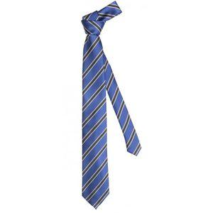 CRAVATE - NŒUD PAPILLON Cravate de Fabio Farini rayé en bleu noir gris