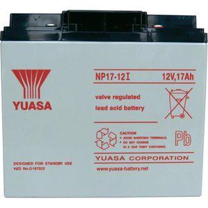 BATTERIE DOMOTIQUE Batterie plomb 12 V 17 Ah Yuasa NP17-12