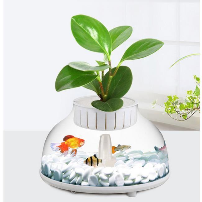 Mini aquarium de r servoir de poissons d coration for Mini poisson aquarium
