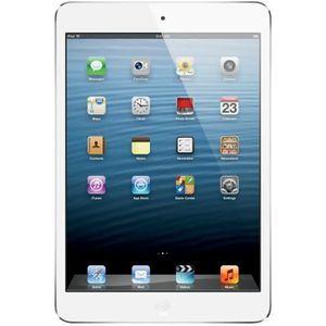 TABLETTE TACTILE Apple iPad mini Wi-Fi Tablette 16 Go 7.9