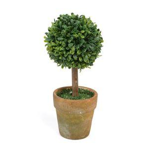 Pot de fleur pour boule de buis - Achat / Vente Pot de ...