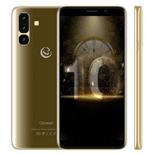 SMARTPHONE Smartphone Pas cher GOOWEEL S10 Ecran IPS 5.45