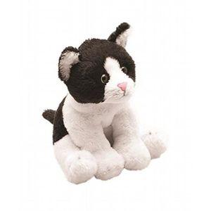 noir Dick et blanc chatte vraies copines noires
