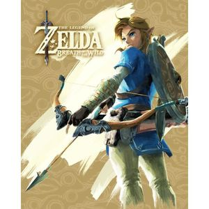 CADRE PHOTO Cadre 3D Zelda breath of wild - Lenticulaire adven