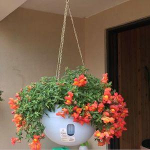 grand pot de fleur en plastique achat vente pas cher. Black Bedroom Furniture Sets. Home Design Ideas