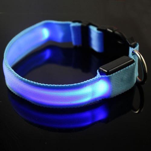 Simplisim: Collier Chat Lumineux Lumiere Led Clignotant Reglable Colore Etanche Fluo Flash Bleu Taille L