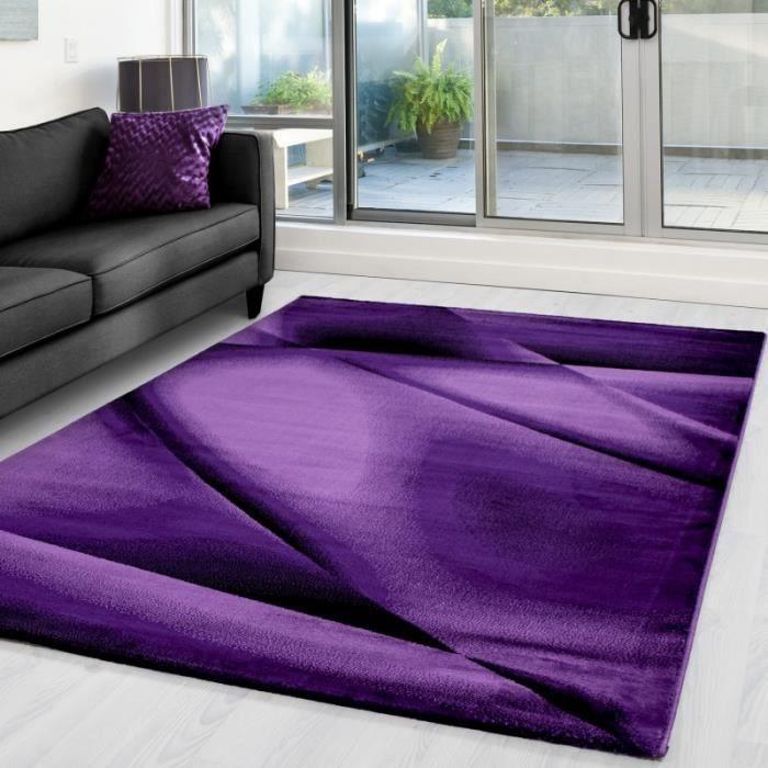 Tapis moderne et designe MIAMI 6590 Violet (160x230 cm)