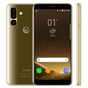 SMARTPHONE GOOWEEL S10 Smartphone Pas cher Ecran IPS 5.45