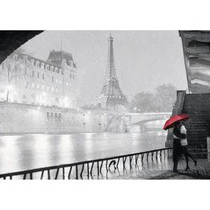 PUZZLE Puzzle 1000 pièces : Paris sous la pluie