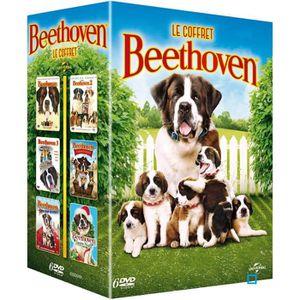 DVD DESSIN ANIMÉ DVD Le Coffret Beethoven