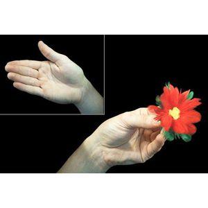 JEU MAGIE Chasse aux fleurs - Tour de Magie