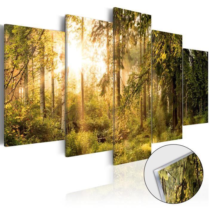 PARAVENT Tableau sur verre acrylique     Magic of Forest [G
