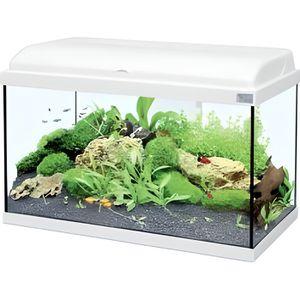 Aquarium 80 litres achat vente aquarium 80 litres pas for Aquarium pas cher 50l