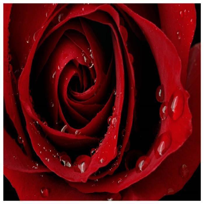 1 Sticker Boite Aux Lettres 30x30 Cm Fleur Rose Rouge Achat