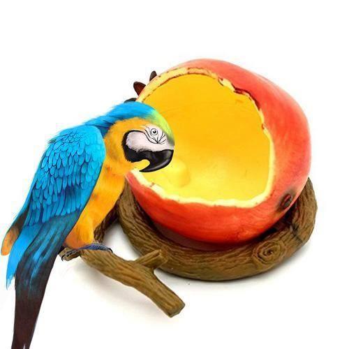MANGEOIRE - TRÉMIE Mangeoire de Conteneur Alimentaire fruits style #2