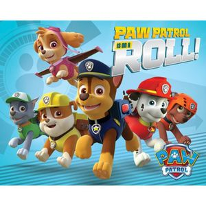 AFFICHE - POSTER Mini Poster Pat' Patrouille - On A Roll (40 x 50 c