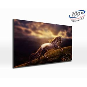 TABLEAU - TOILE Galloping Horse en toile impression photo panorami