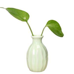 VASE - SOLIFLORE Petit Vase Céramique Vert Style Simple Mini Vase D