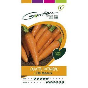 GRAINE - SEMENCE Gondian carotte potagère de Meaux