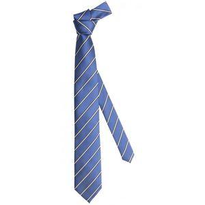 CRAVATE - NŒUD PAPILLON Cravate de Fabio Farini rayé en bleu