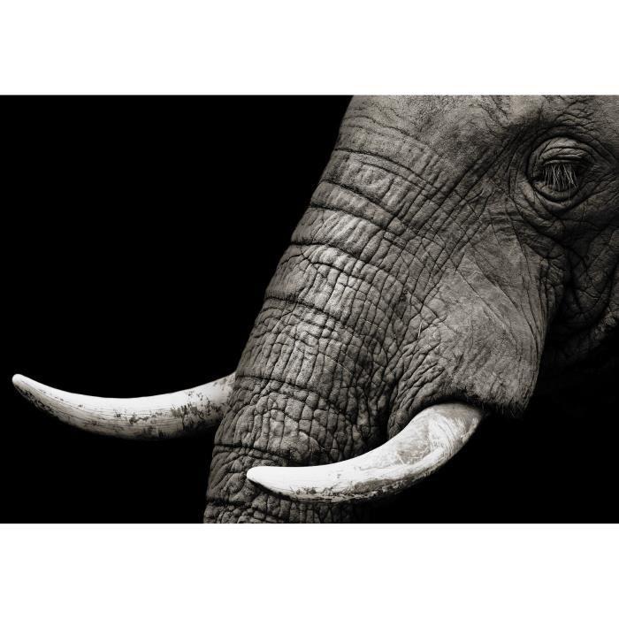 tableau elephant noir et blanc achat vente tableau elephant noir et blanc pas cher cdiscount. Black Bedroom Furniture Sets. Home Design Ideas