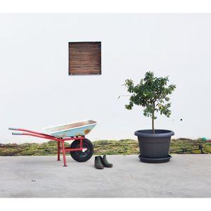 JARDINIÈRE - POT FLEUR  PLASTIKEN plateau rond Ø 12 cm pour pot rond - Ant