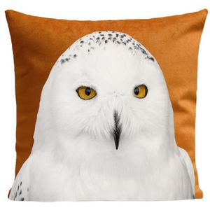 COUSSIN ARTPILO - Coussin SNOWY OWL Coton déperlant - Cuiv
