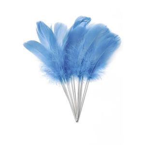 PICS COCKTAIL - APERO 12 Plumes bleu turquoise sur pic ceae73fbda1