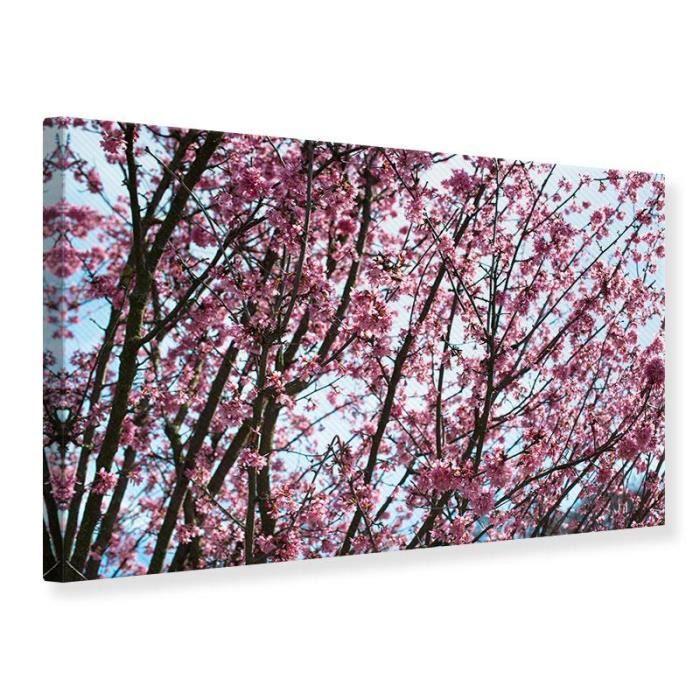 Tableau Sur Toile Fleurs De Cerisier Japonais 30 X 20 Cm Achat