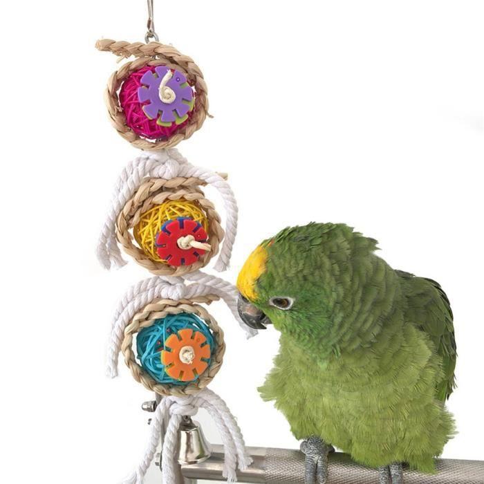 JOUET PET Bird Parrot Swing cage jouets mâcher piqûres p