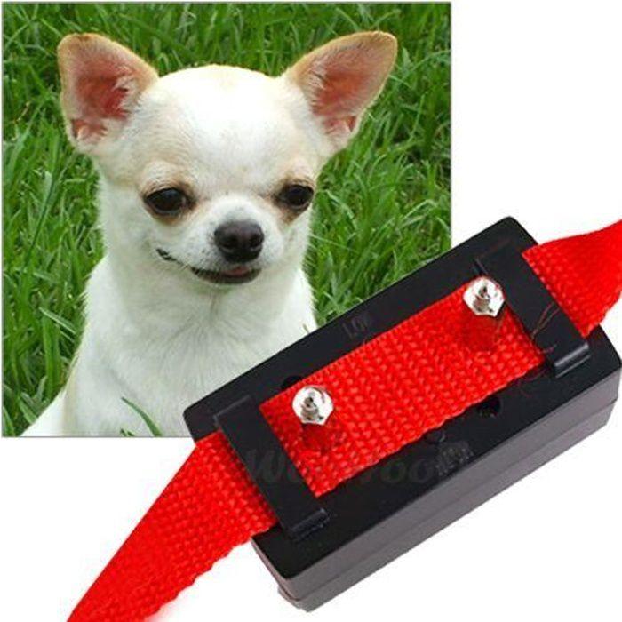 collier alarme anti aboiement automatique chien chiot achat vente anti aboiement collier. Black Bedroom Furniture Sets. Home Design Ideas