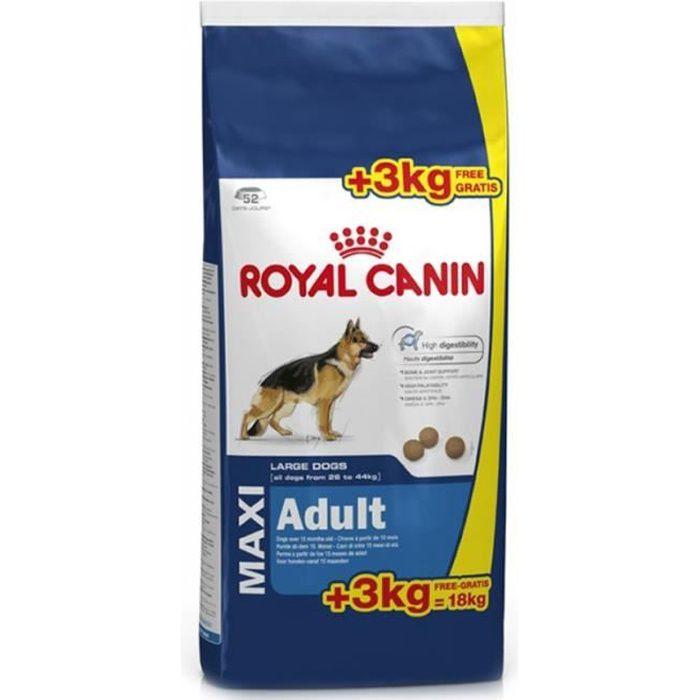 croquettes pour chien adult royal canin - achat / vente croquettes