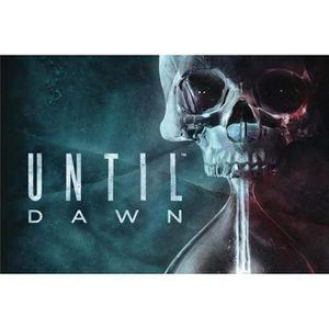 JEU CONSOLE RÉTRO Until Dawn (PS4 Only) HITS