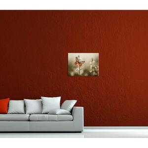 tableau papillon achat vente pas cher. Black Bedroom Furniture Sets. Home Design Ideas