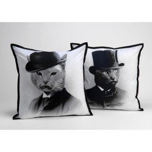 COUSSIN Coussins Sirs Cats Amadeus