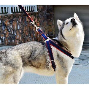 HARNAIS ANIMAL Harnais pour chien anti-étranglement, rembourré, r