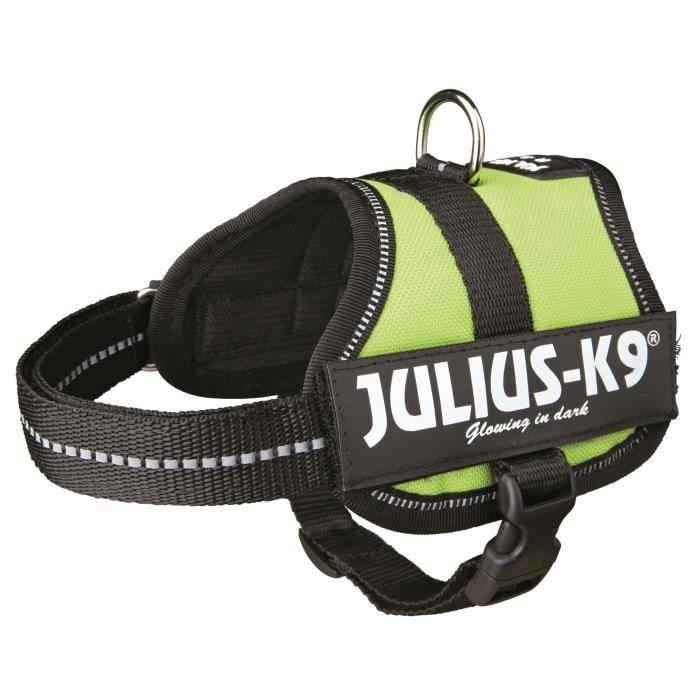 Harnais Power Julius-K9 - Baby 2 - XS-S : 33-45 cm-18 mm - Vert pastel - Pour chien