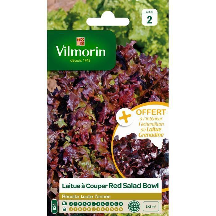 VILMORIN Laitue à couper Red Salad Bowl + échantillon laitue à couper Grenadine