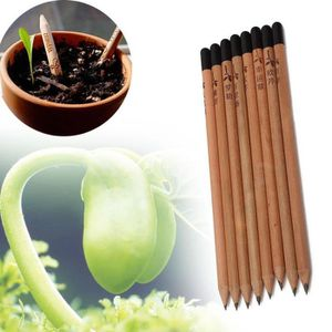 GRAINE - SEMENCE 8 Pieces Sprouting Bud Sprout crayon Plantation He