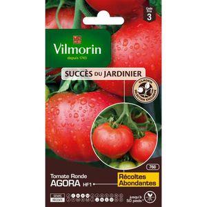 VILMORIN Tomate Agora HF1 Sachet de graines - Création Vilmorin
